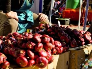 piata tarani